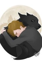 Sirius and Remus after Azkaban life by WolfStarissocute