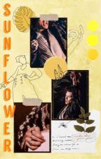Sunflower || A Harry Styles Social Media A.U.  by ireallylikekiwis