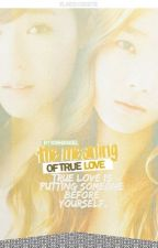 The Meaning of true love by sy_sonesone9