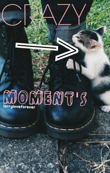 Crazy Kitty Moments by larryloveforever