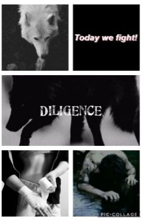 Diligence by leg3ndary1