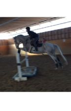 Lansdale Academy by aerodynamic_eventing