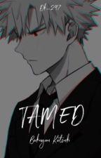 tamed // k.bakugou by Dk_297