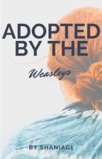 Adopted by the Weasleys (under some huge editing) by ShaniaG1