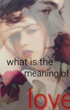 What is the meaning of love by shoshokh