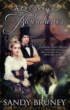 A Question of Boundaries by Sandy Bruney by clean_reads