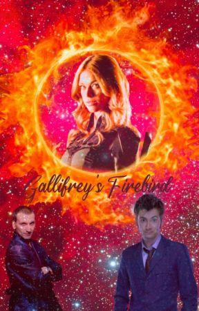 Gallifrey's Firebird by MaethorielArtemis