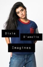 Dixie D'amelio imagines and preferences  by SAPPPY_COCKTAIL