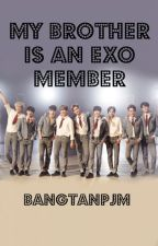 My Brother is an EXO member - An EXO Fanfiction by first__sight