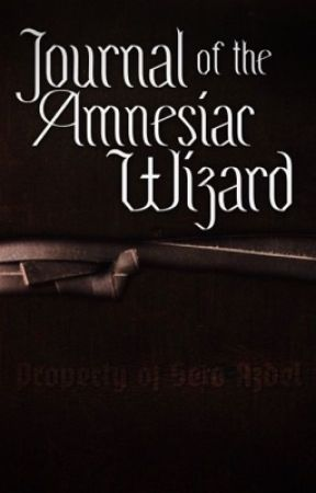 Journal of the Amnesiac Wizard: A Setosorcerer Story by missmatched123