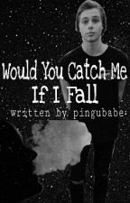 Would You Catch Me If I Fall (L.H. Fanfiction) by pingubabe