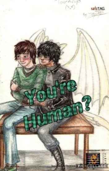 You're Human? (HTTYD) (Toothless x Hiccup) (Dragon/Human Toothless)
