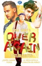 Little Secret II: Over Again. [AU- Niam/Ziall Horalik] Mini Novela by LittleRabbit69