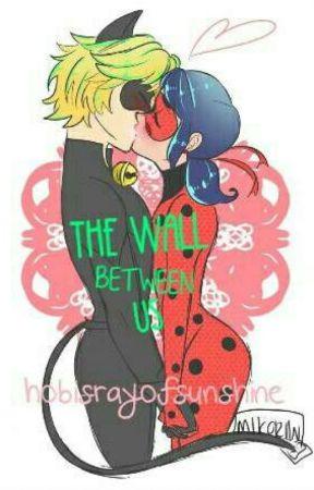The Wall Between Us | Miraculous Ladybug FF by hobisrayofsunshine