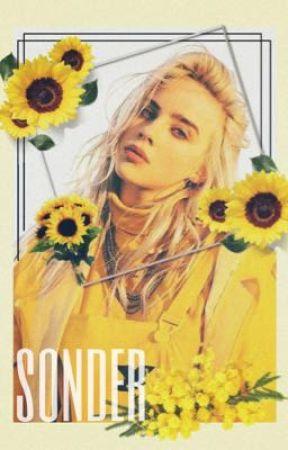 sonder by book_love29