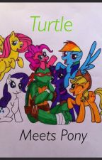 The story about a turtle and a pony (TMNT/My little pony) by ANNEYblood