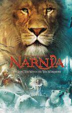 Knights of Narnia by warriorfox279