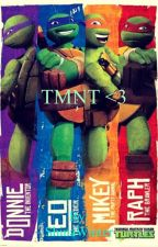 TMNT~ <3 {OnHold} by ShinaWinter