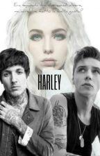 Harley by Olibiersack
