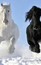 Horse-shifter probems by R_GIRL_WRITER_BOOK12