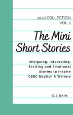 Mini Short Stories: 2020 Volume 1 by CSBainSuccess