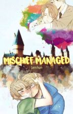 Mischief Managed  by lemhun