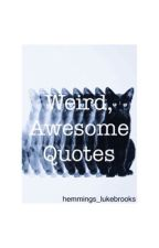 Weird, awesome quotes by hemmings_lukebrooks