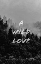 A Wild Love by UKnowIHadToDoItToEm