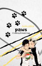paws // bokuaka by llowkeydreamingg