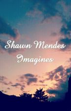 Shawn mendes imagines by imagines10246
