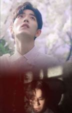 Spring in yours by WuMinYoung