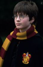 Harry Potter x reader - Year 1 by quidditch_queen06