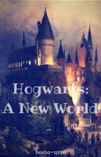 Hogwarts: A New World by fvckitall_