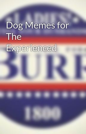 Dog Memes for The Experienced by yoursoftboi