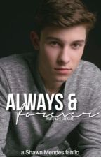 Always & Forever ➸ Shawn Mendes by jaexjae