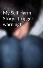 My Self Harm Story....(trigger warning) by ItsBraedon