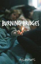 Burning Bridges by Skinnylittlebird
