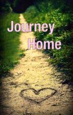 Journey Home by fandomsfeels