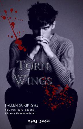 Torn Wings by aras_sara