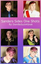 Sanders Sides One Shots by DontBeSuchASnek