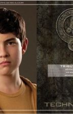 The Unknown boy from district 3 by crazyfrog1999