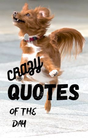 Crazy Quotes Of The Day by WildSenso