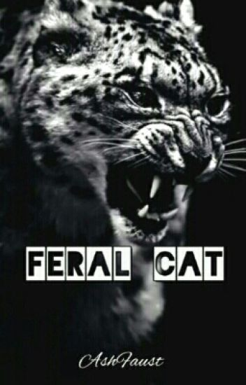 Feral Cat [TnC FanFic| BoyxBoy]