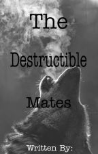 The Destructible Mates [ Book 2 ] by WrittenKvngK
