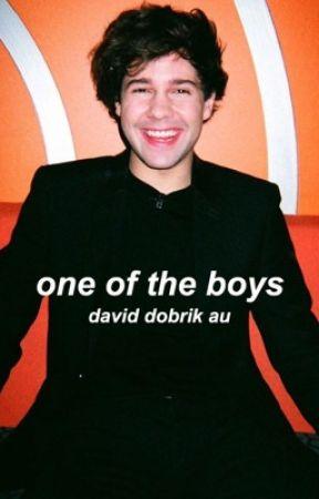 one of the boys » david dobrik au by messydobrik