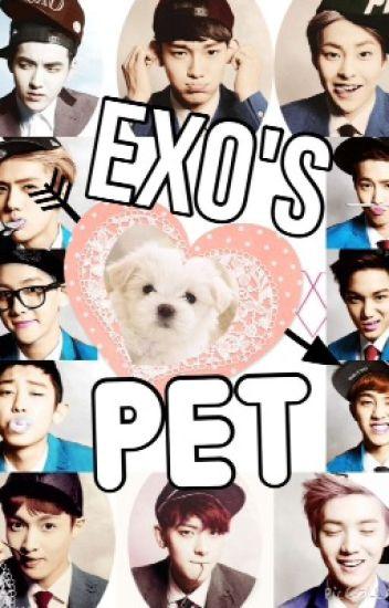 EXO's Pet (EXO FANFIC) - LetUsFly - Wattpad