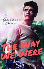 The Way We Were - A Chase Stein x Reader Fanfiction by thalia-holland