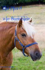 Ein Pferde wie Sunshine by greenroses26