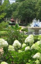 Exploring Three More Botanical Gardens in the United States by buygrowsupplies