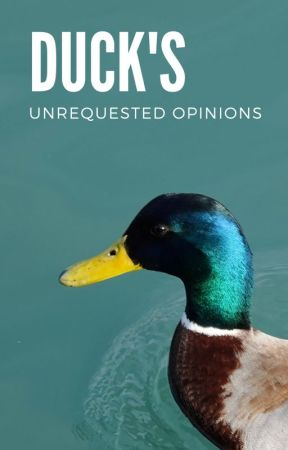 Duck's Unrequested Opinions by saturnxduck